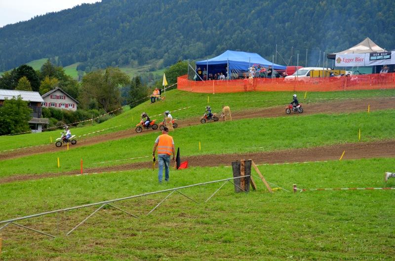 11_mofaundminicrossrennen_off-roader_krumbach_2015_3632